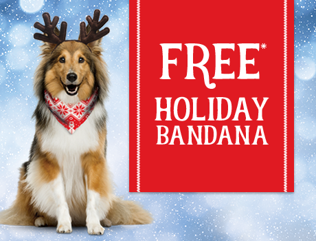 Free Holiday Bandana*